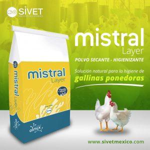Mistral Layer