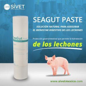 Seagut Paste